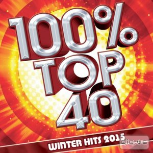 100% Top 40 Winter Hits 2015 (2015)